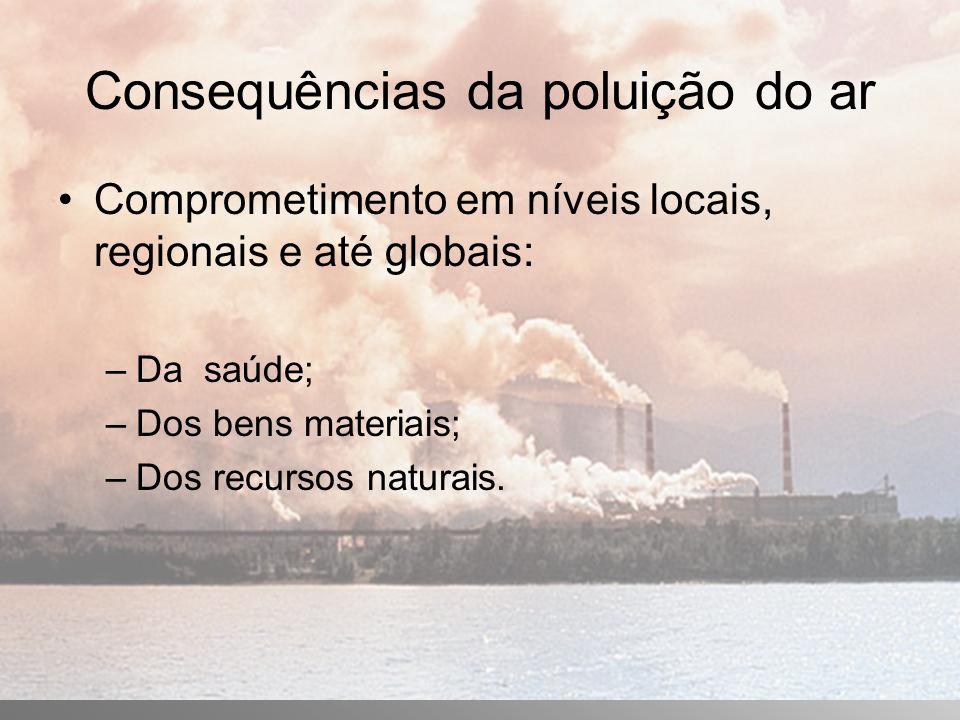 Consequências da poluição do ar Comprometimento em níveis locais, regionais e até globais: –Da saúde; –Dos bens materiais; –Dos recursos naturais.