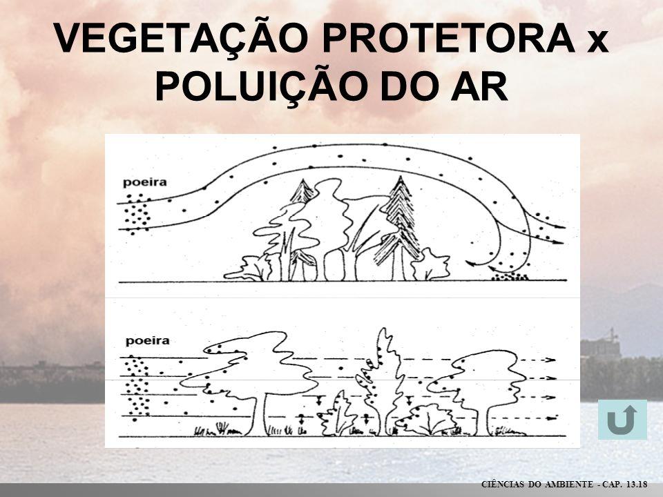 VEGETAÇÃO PROTETORA x POLUIÇÃO DO AR CIÊNCIAS DO AMBIENTE - CAP. 13.18