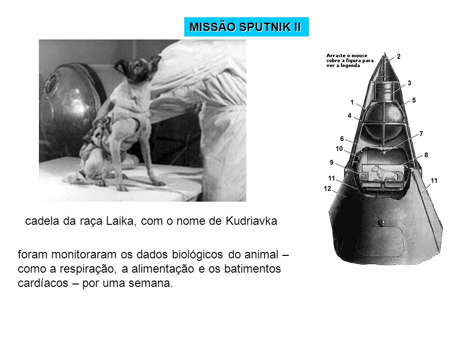 Réplica do satélite Sputnik, o primeiro a ser enviado ao espaço, há 50 anos Lançado por um foguete em outubro de 1958, o Sputnik – satélite, em russo