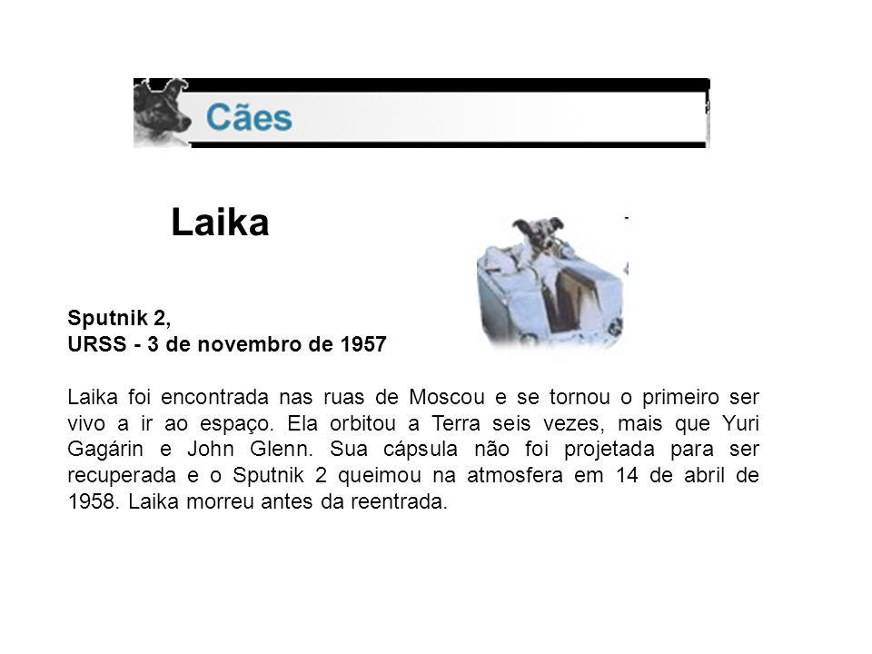 MISSÃO SPUTNIK II cadela da raça Laika, com o nome de Kudriavka foram monitoraram os dados biológicos do animal – como a respiração, a alimentação e o