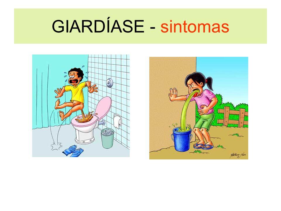 GIARDÍASE - sintomas