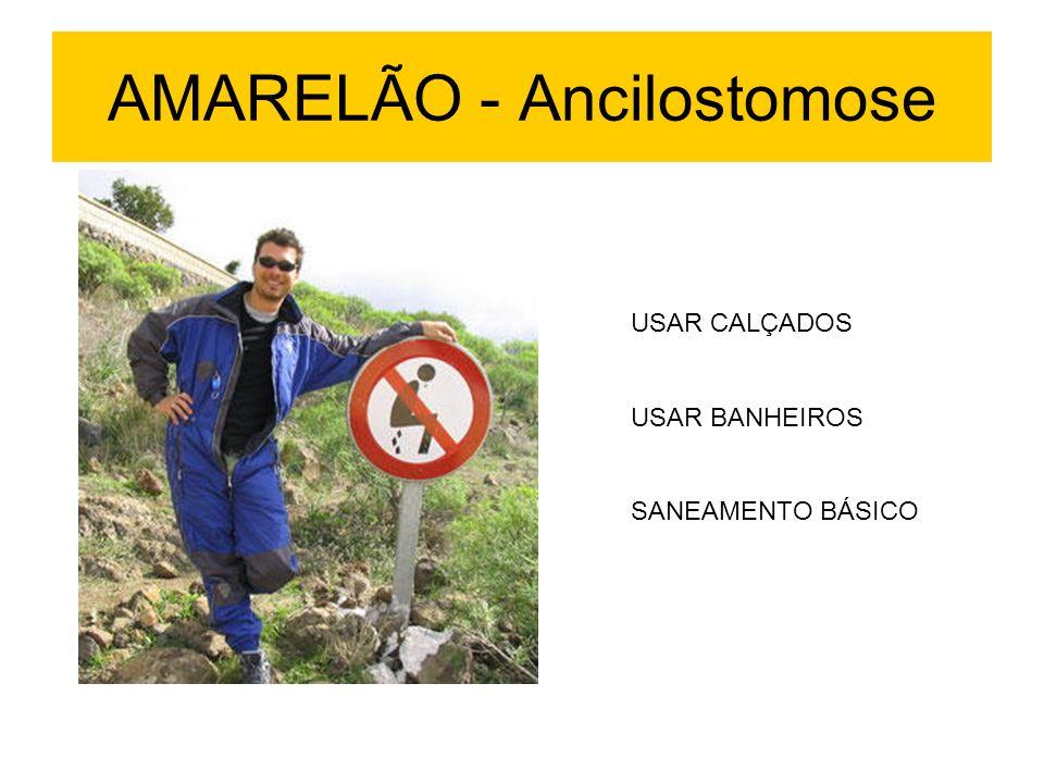 USAR CALÇADOS USAR BANHEIROS SANEAMENTO BÁSICO