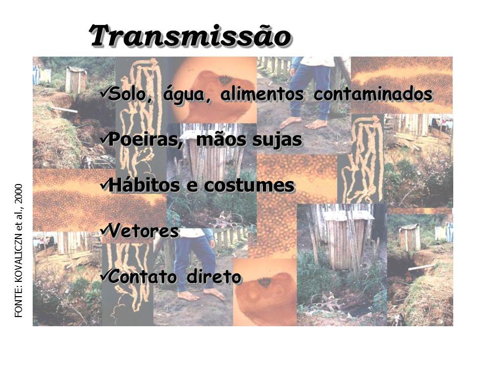 Transmissão Transmissão Solo, água, alimentos contaminados Solo, água, alimentos contaminados Poeiras, mãos sujas Poeiras, mãos sujas Hábitos e costum