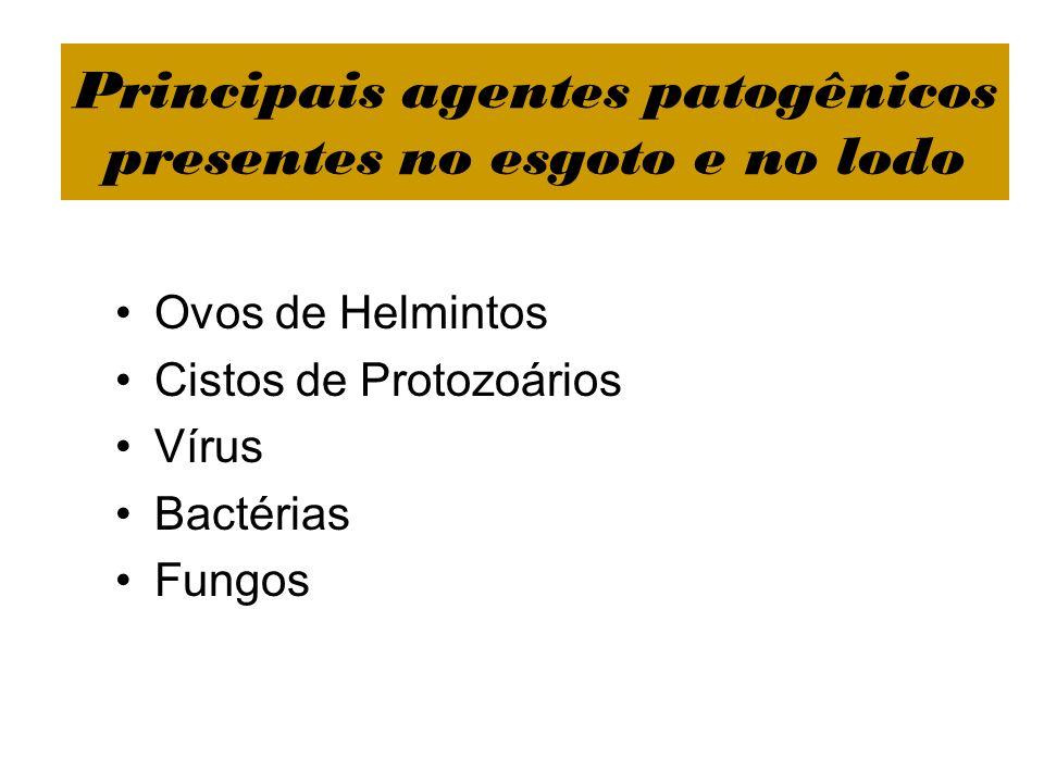 Principais agentes patogênicos presentes no esgoto e no lodo Ovos de Helmintos Cistos de Protozoários Vírus Bactérias Fungos