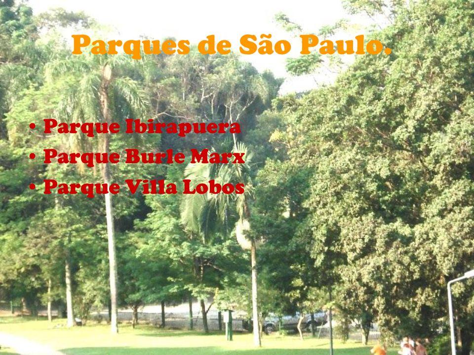 Parques de São Paulo. Parque Ibirapuera Parque Burle Marx Parque Villa Lobos