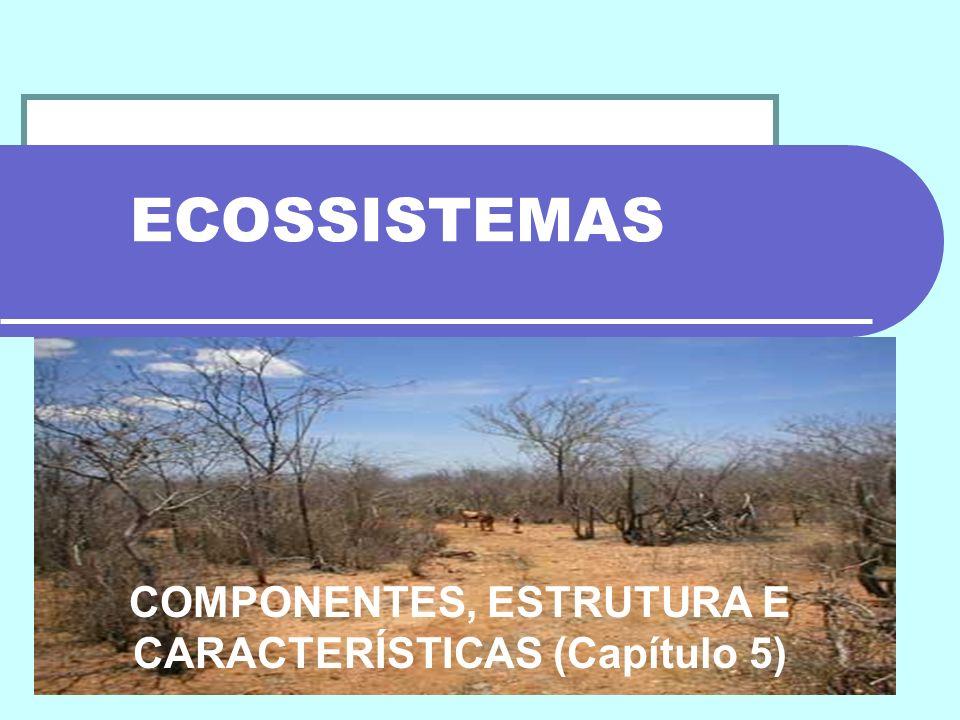 ECOSSISTEMAS COMPONENTES, ESTRUTURA E CARACTERÍSTICAS (Capítulo 5)