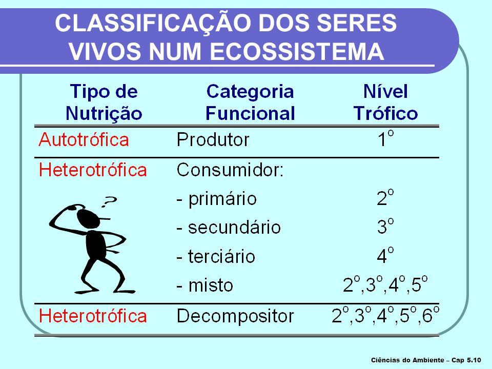 CLASSIFICAÇÃO DOS SERES VIVOS NUM ECOSSISTEMA Ciências do Ambiente – Cap 5.10