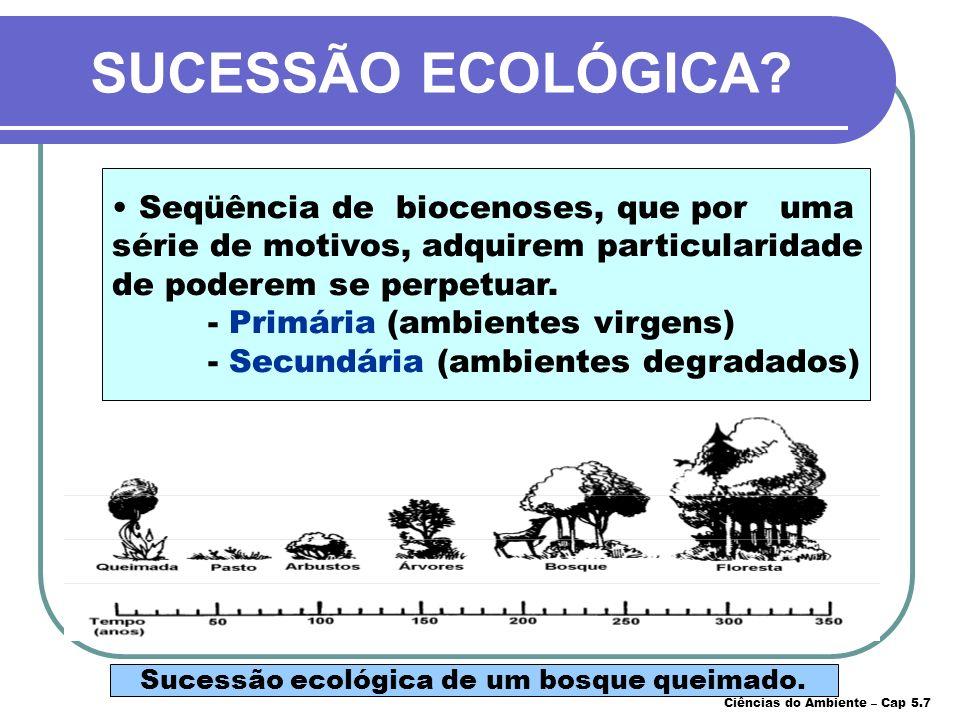 Sucessão ecológica de um bosque queimado. SUCESSÃO ECOLÓGICA? Seqüência de biocenoses, que por uma série de motivos, adquirem particularidade de poder