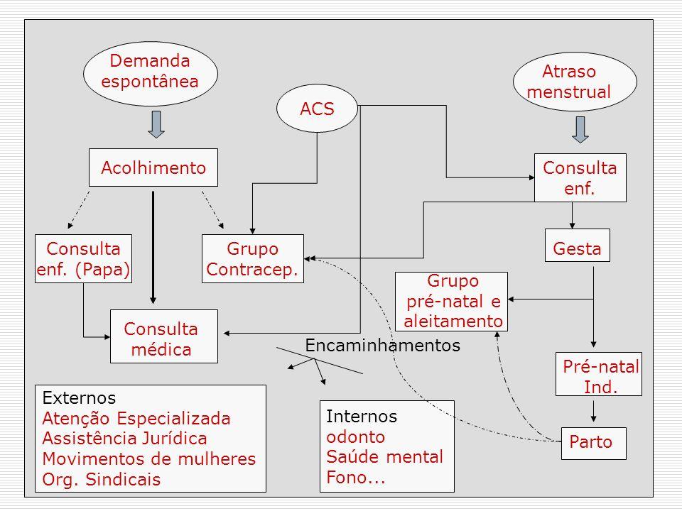 EXEMPLOS DE FLUXOGRAMAS SAÚDE DO ADOLESCENTE