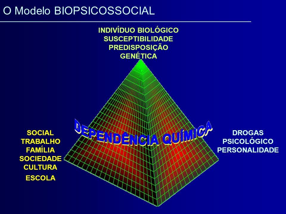 SOCIAL TRABALHO FAMÍLIA SOCIEDADE CULTURA ESCOLA DROGAS PSICOLÓGICO PERSONALIDADE INDIVÍDUO BIOLÓGICO SUSCEPTIBILIDADE PREDISPOSIÇÃO GENÉTICA O Modelo