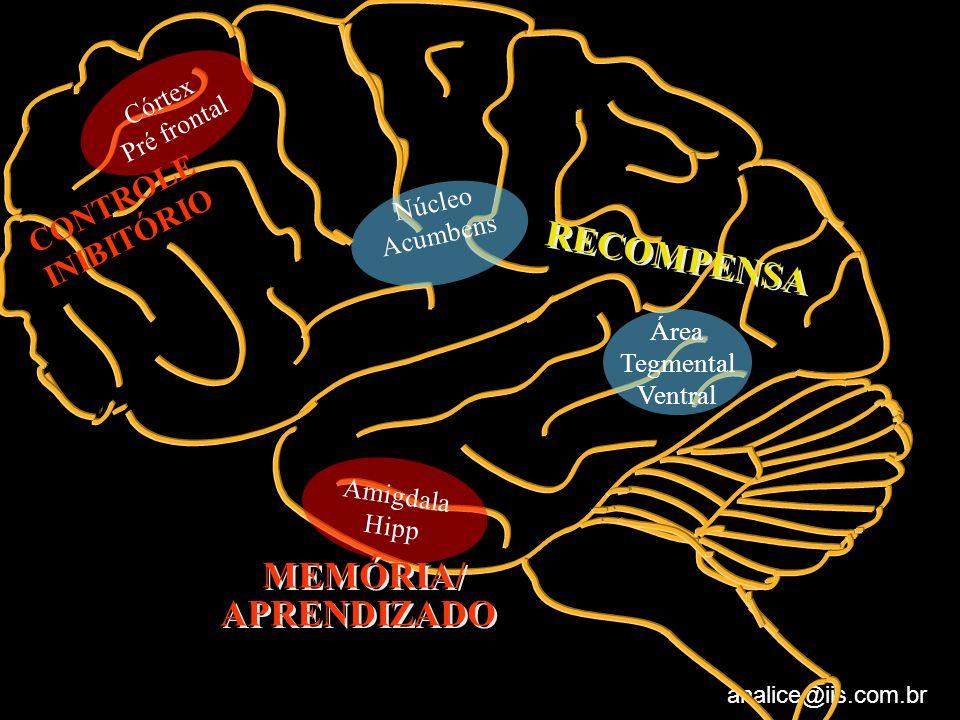 analice@iis.com.br Núcleo Acumbens Amigdala Hipp Área Tegmental Ventral Córtex Pré frontal RECOMPENSA CONTROLE INIBITÓRIO MEMÓRIA/ APRENDIZADO MEMÓRIA