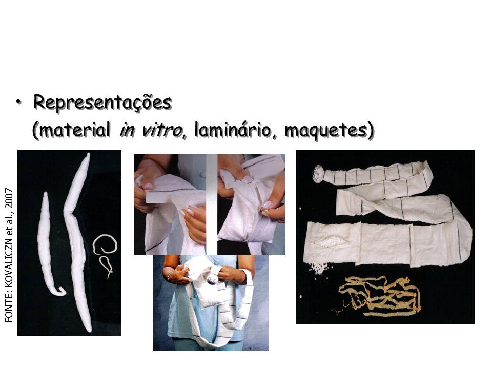 Representações (material in vitro, laminário, maquetes) Representações (material in vitro, laminário, maquetes) FONTE: KOVALICZN et al., 2007
