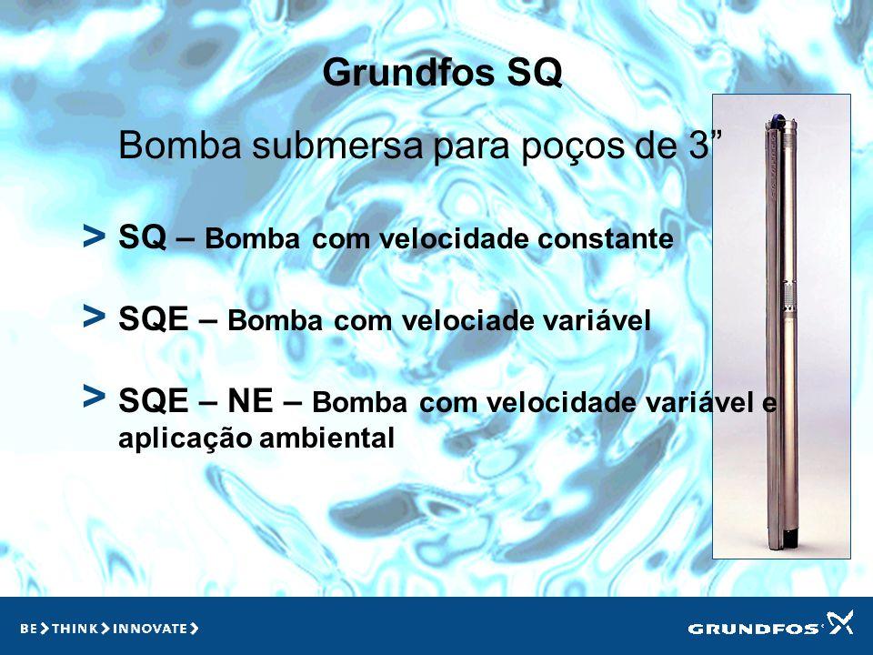 Grundfos SQ > > > Bomba submersa para poços de 3 SQ – Bomba com velocidade constante SQE – Bomba com velociade variável SQE – NE – Bomba com velocidade variável e aplicação ambiental