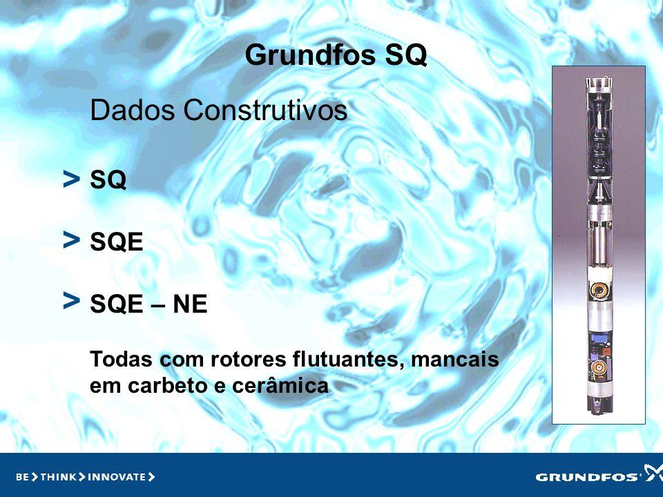 Grundfos SQ > > > Características SQ Standard – AISI 304/poliamida + f.v Velocidade constante SQE Inteligente – AISI 304/poliamida + f.v Velocidade va
