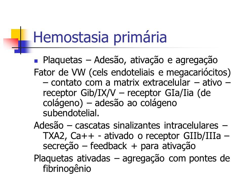 Hemostasia primária Plaquetas – Adesão, ativação e agregação Fator de VW (cels endoteliais e megacariócitos) – contato com a matrix extracelular – ati