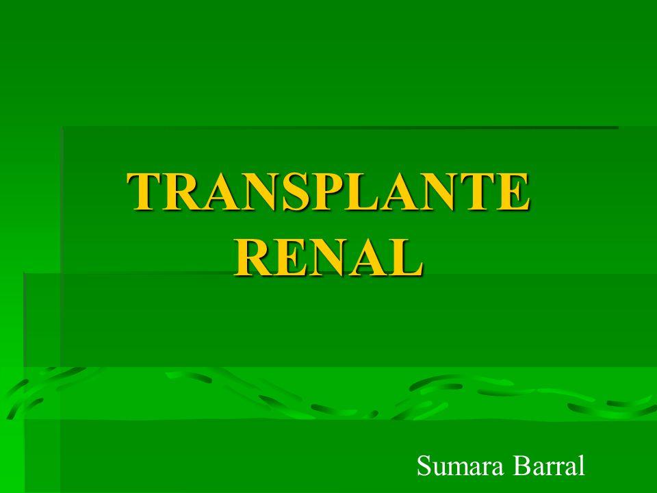TRANSPLANTE RENAL Sumara Barral