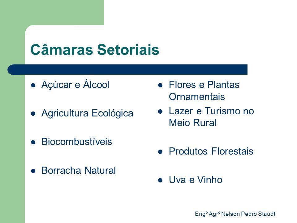 Engº Agrº Nelson Pedro Staudt Câmaras Setoriais Açúcar e Álcool Agricultura Ecológica Biocombustíveis Borracha Natural Flores e Plantas Ornamentais La