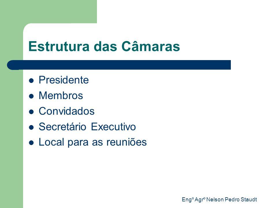 Engº Agrº Nelson Pedro Staudt Estrutura das Câmaras Presidente Membros Convidados Secretário Executivo Local para as reuniões