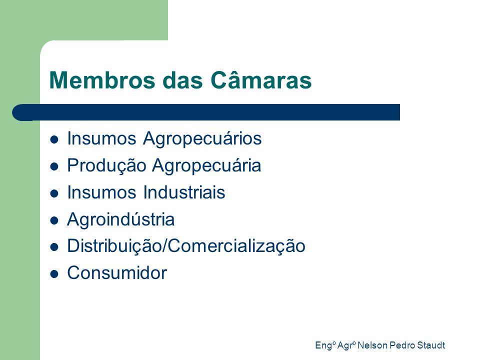 Engº Agrº Nelson Pedro Staudt Membros das Câmaras Insumos Agropecuários Produção Agropecuária Insumos Industriais Agroindústria Distribuição/Comercial