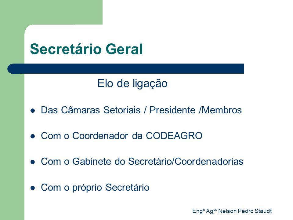 Engº Agrº Nelson Pedro Staudt Secretário Geral Elo de ligação Das Câmaras Setoriais / Presidente /Membros Com o Coordenador da CODEAGRO Com o Gabinete