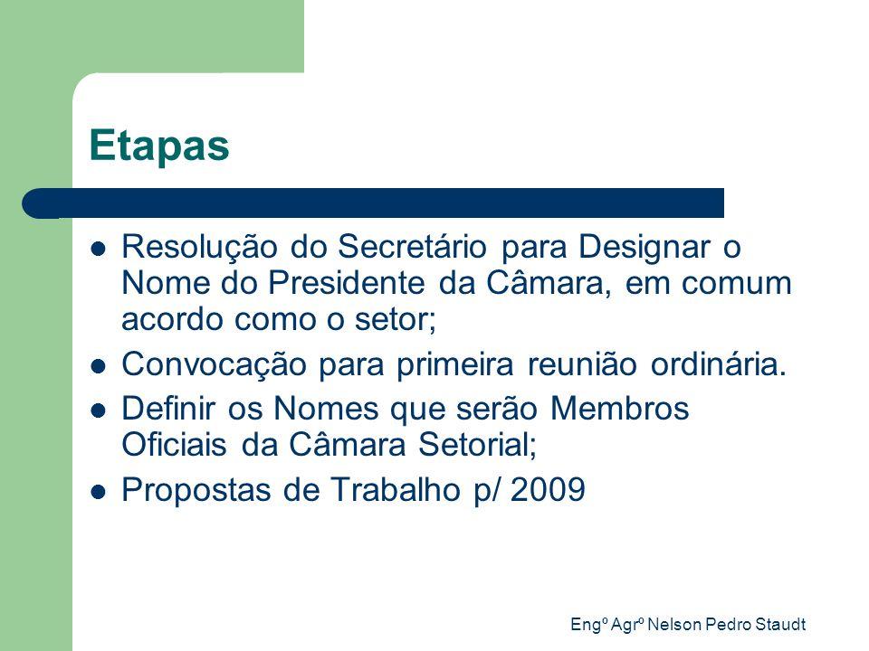 Engº Agrº Nelson Pedro Staudt Etapas Resolução do Secretário para Designar o Nome do Presidente da Câmara, em comum acordo como o setor; Convocação pa