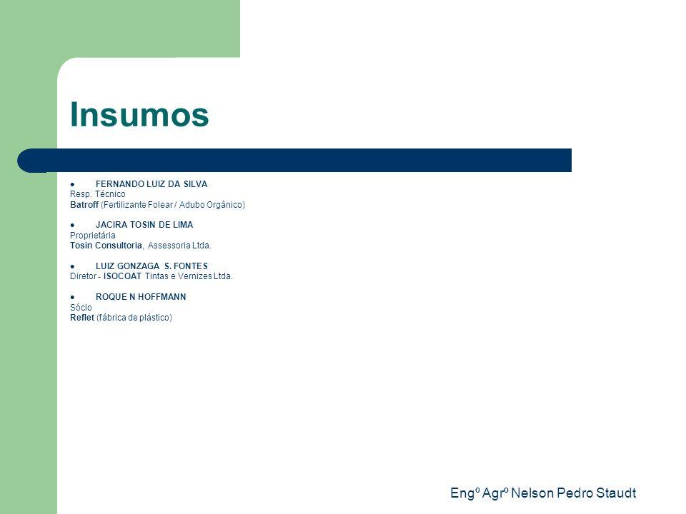 Engº Agrº Nelson Pedro Staudt Insumos FERNANDO LUIZ DA SILVA Resp. Técnico Batroff (Fertilizante Folear / Adubo Orgânico) JACIRA TOSIN DE LIMA Proprie