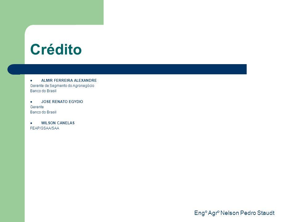 Engº Agrº Nelson Pedro Staudt Crédito ALMIR FERREIRA ALEXANDRE Gerente de Segmento do Agronegócio Banco do Brasil JOSE RENATO EGYDIO Gerente Banco do