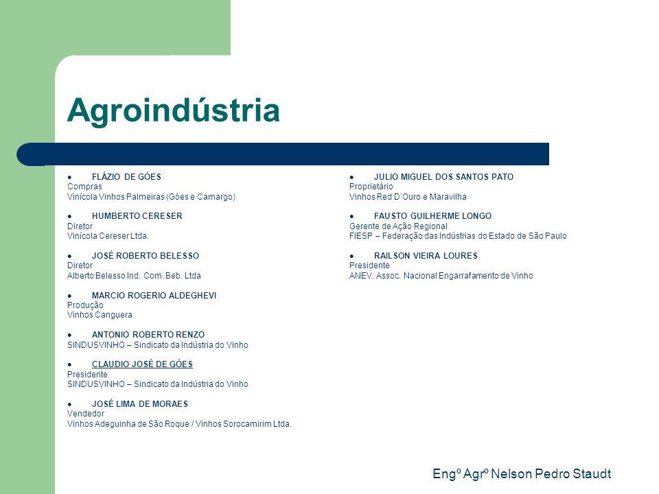 Engº Agrº Nelson Pedro Staudt Agroindústria FLÁZIO DE GÓES Compras Vinícola Vinhos Palmeiras (Góes e Camargo) HUMBERTO CERESER Diretor Vinícola Cerese