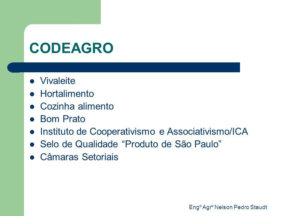 Engº Agrº Nelson Pedro Staudt Membros das Câmaras Insumos Agropecuários Produção Agropecuária Insumos Industriais Agroindústria Distribuição/Comercialização Consumidor