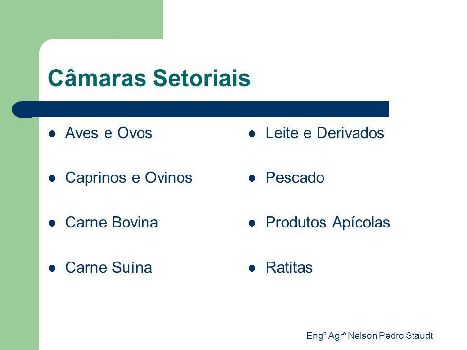 Engº Agrº Nelson Pedro Staudt Endereços camaras_setoriais@codeagro.sp.gov.br www.codeagro.sp.gov.br Fone/Fax: 0xx 11 5067-0377/78 Av.