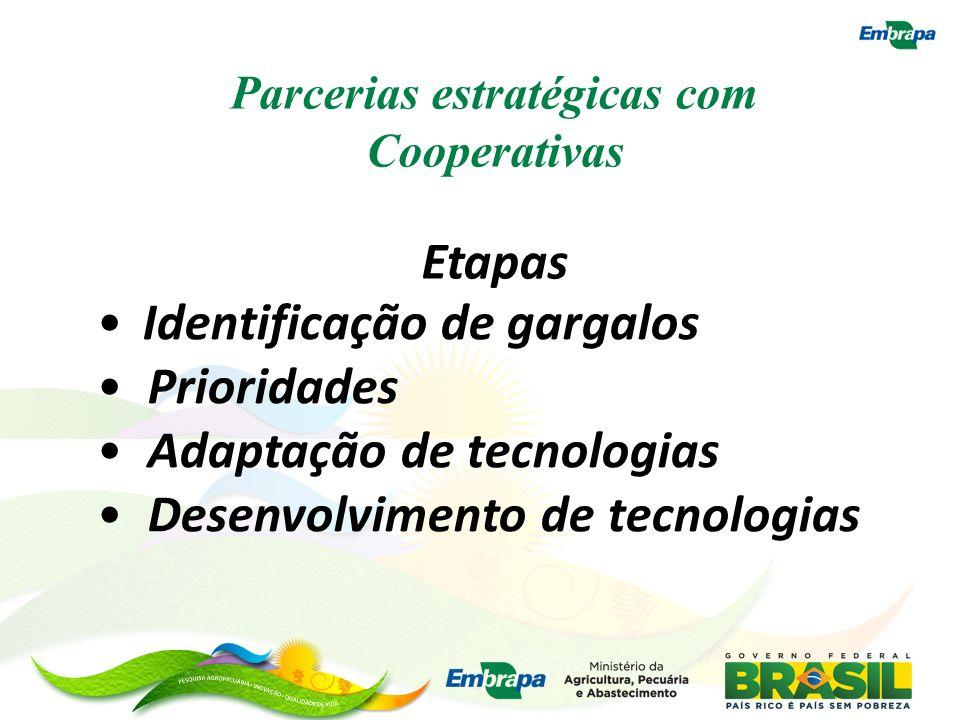 Parcerias estratégicas com Cooperativas Etapas Identificação de gargalos Prioridades Adaptação de tecnologias Desenvolvimento de tecnologias