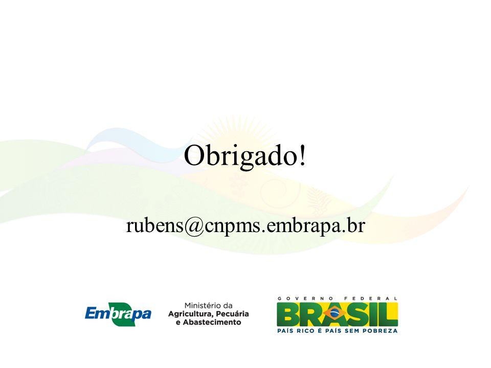 Obrigado! rubens@cnpms.embrapa.br