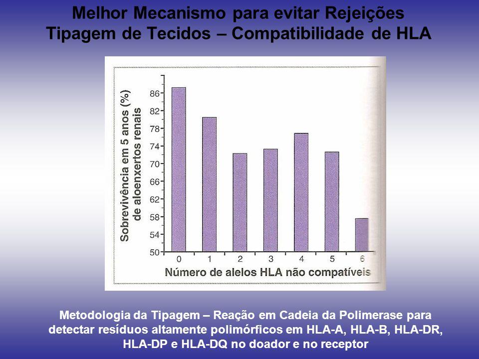 Melhor Mecanismo para evitar Rejeições Tipagem de Tecidos – Compatibilidade de HLA Metodologia da Tipagem – Reação em Cadeia da Polimerase para detect