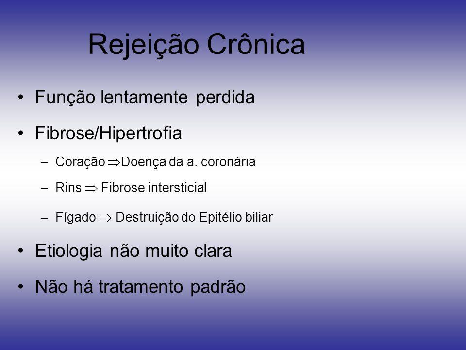 Rejeição Crônica Função lentamente perdida Fibrose/Hipertrofia –Coração Doença da a. coronária –Rins Fibrose intersticial –Fígado Destruição do Epitél