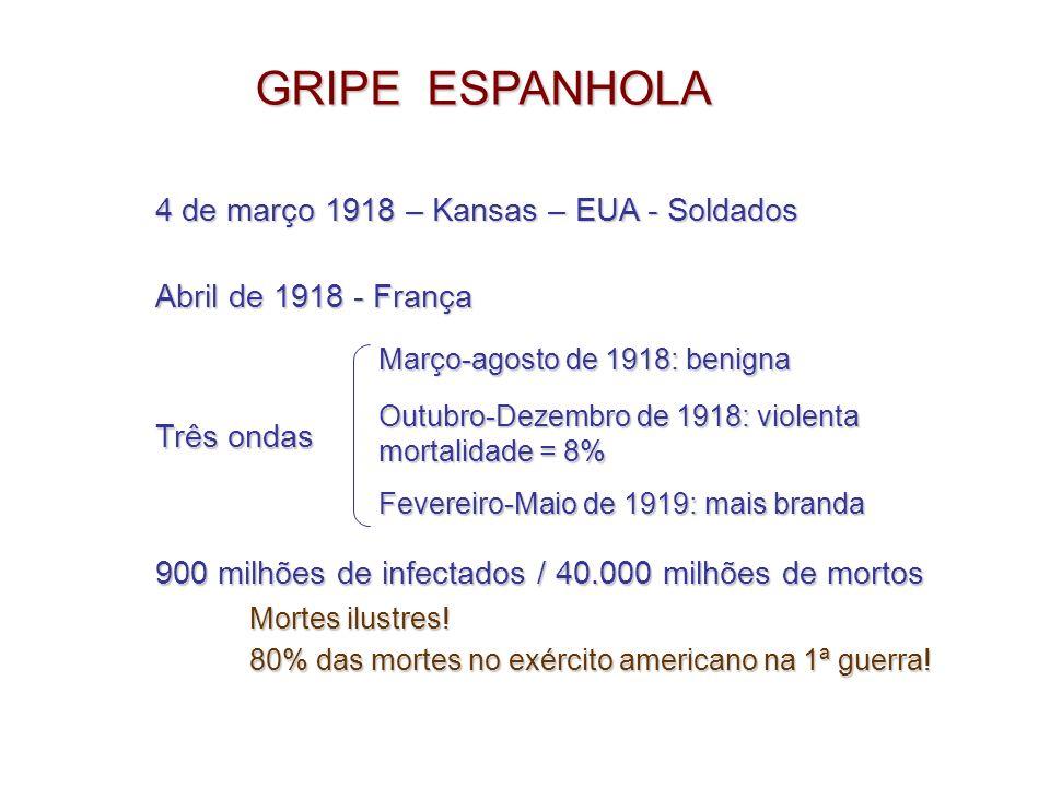 GRIPE ESPANHOLA NO BRASIL Setembro de 1918: militares vindos do Senegal Descaso com as informações Acreditava-se na barreira do Atlântico Rio: 65% da população adoeceu (20.000 mortos / 3 meses) S.P.: 2.000 mortos 1.150.000 pessoas (570.000 pessoas) BH: (55.000 pessoas)