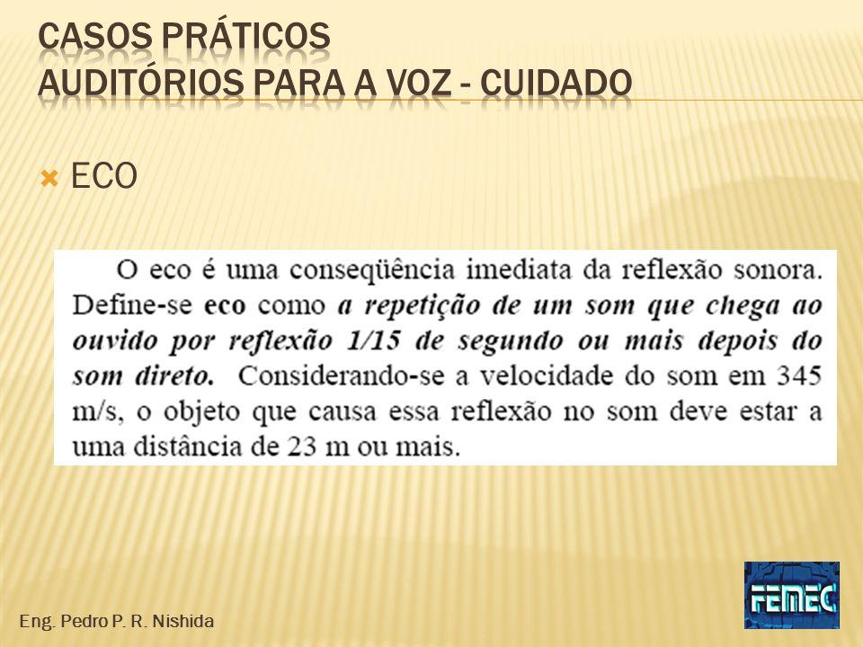 ECO Eng. Pedro P. R. Nishida