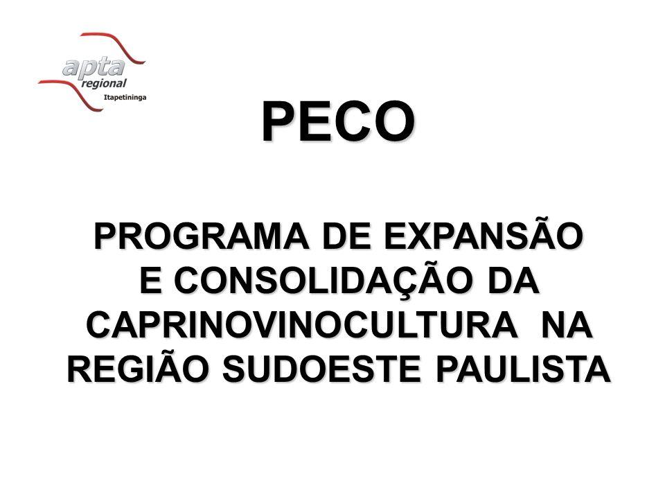 PECO PROGRAMA DE EXPANSÃO E CONSOLIDAÇÃO DA CAPRINOVINOCULTURA NA REGIÃO SUDOESTE PAULISTA