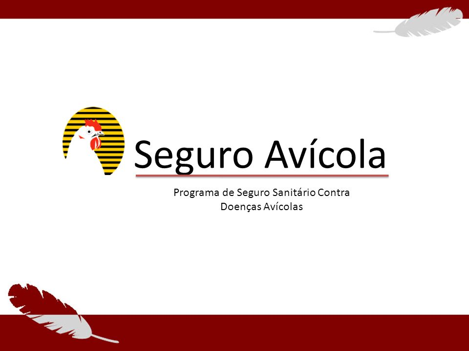 Seguro Avícola Programa de Seguro Sanitário Contra Doenças Avícolas