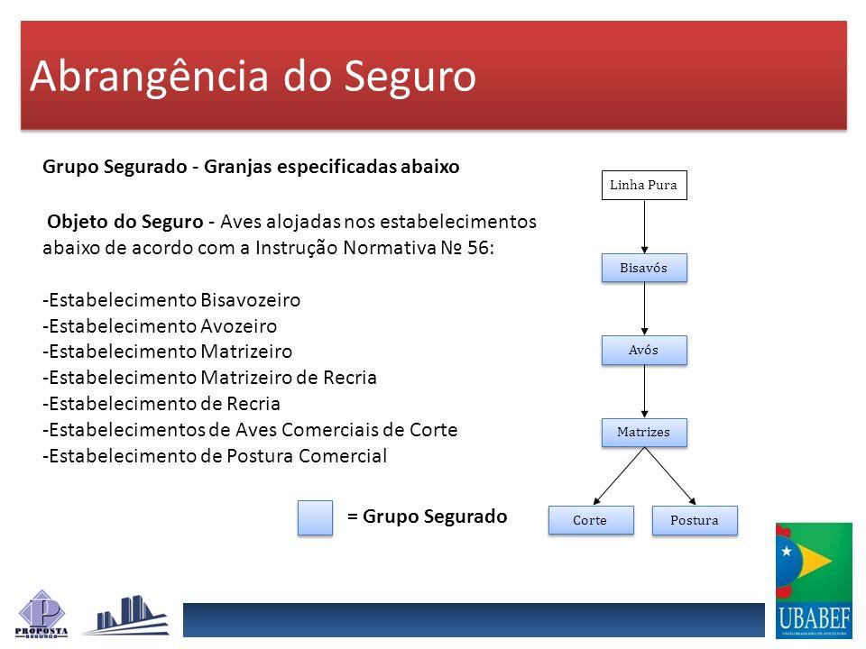 Abrangência do Seguro Abrangência – Projeto destinado ao Estado de São Paulo respeitando a cobertura somente dos estabelecimentos avícolas especificados.