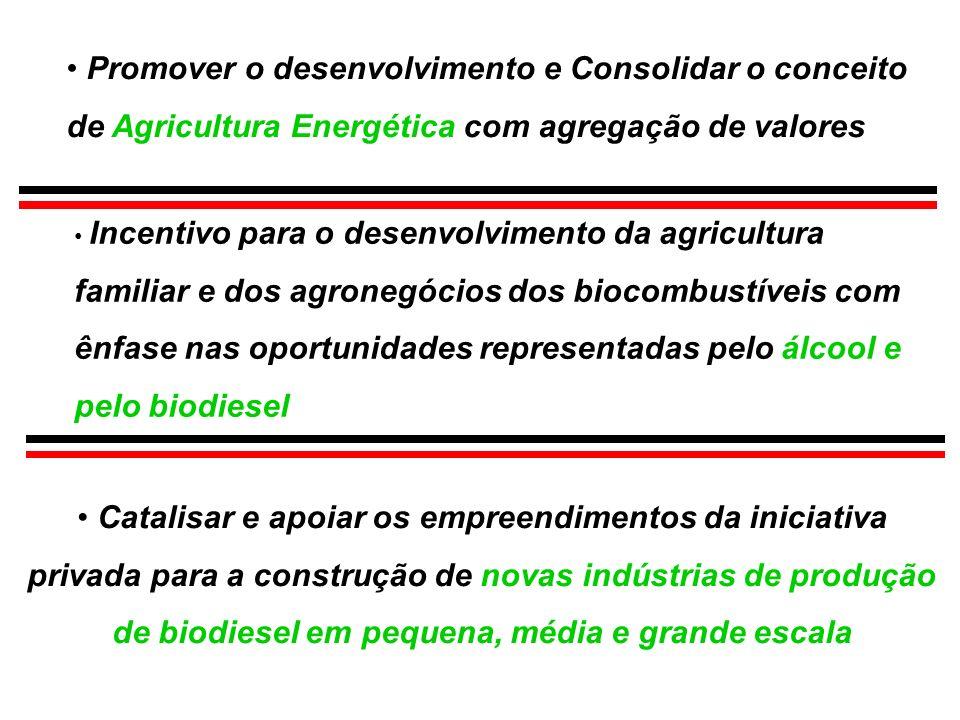 Incentivo para o desenvolvimento da agricultura familiar e dos agronegócios dos biocombustíveis com ênfase nas oportunidades representadas pelo álcool