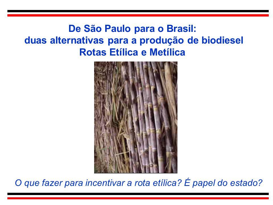 De São Paulo para o Brasil: duas alternativas para a produção de biodiesel Rotas Etílica e Metílica O que fazer para incentivar a rota etílica? É pape