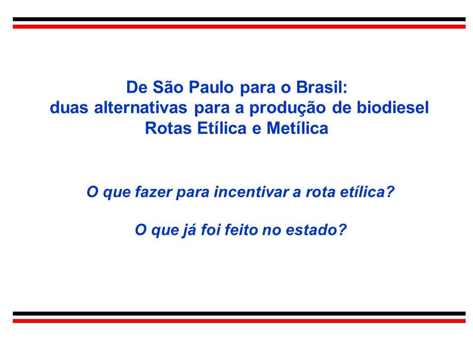 De São Paulo para o Brasil: duas alternativas para a produção de biodiesel Rotas Etílica e Metílica O que fazer para incentivar a rota etílica? O que