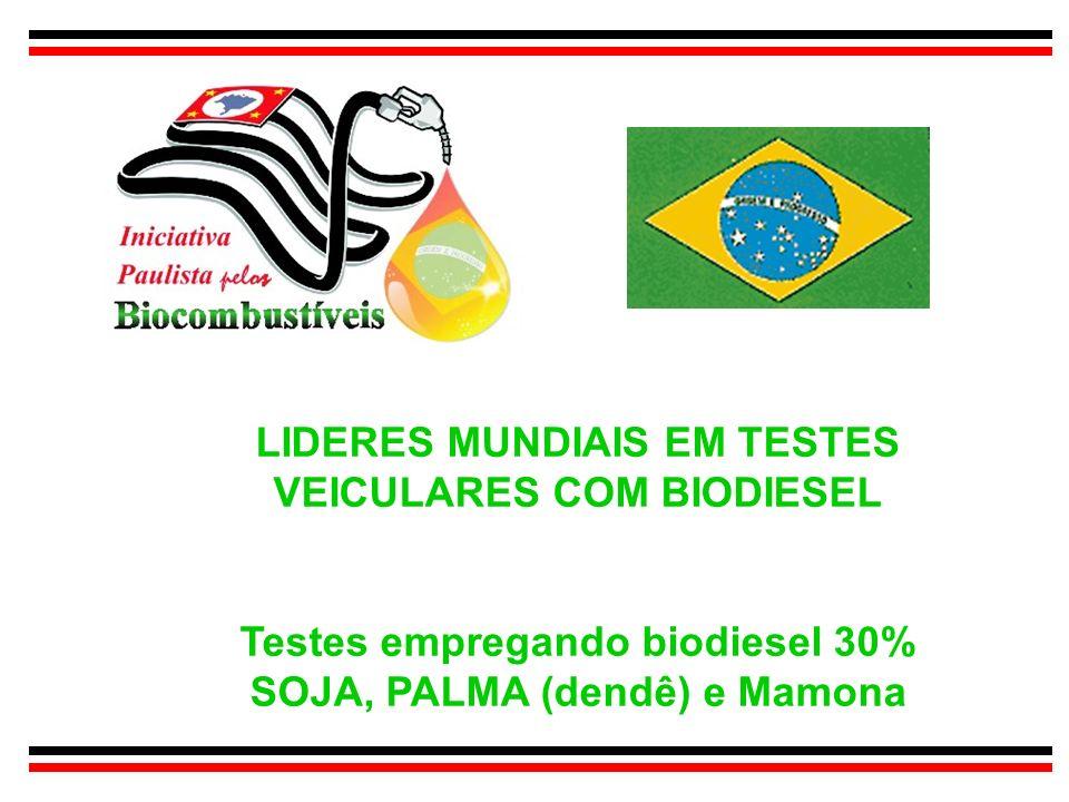 LIDERES MUNDIAIS EM TESTES VEICULARES COM BIODIESEL Testes empregando biodiesel 30% SOJA, PALMA (dendê) e Mamona