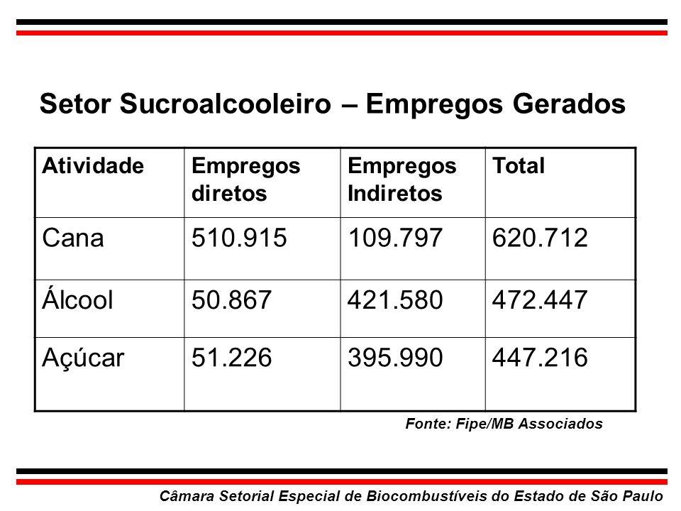Setor Sucroalcooleiro – Empregos Gerados Câmara Setorial Especial de Biocombustíveis do Estado de São Paulo Fonte: Fipe/MB Associados AtividadeEmprego