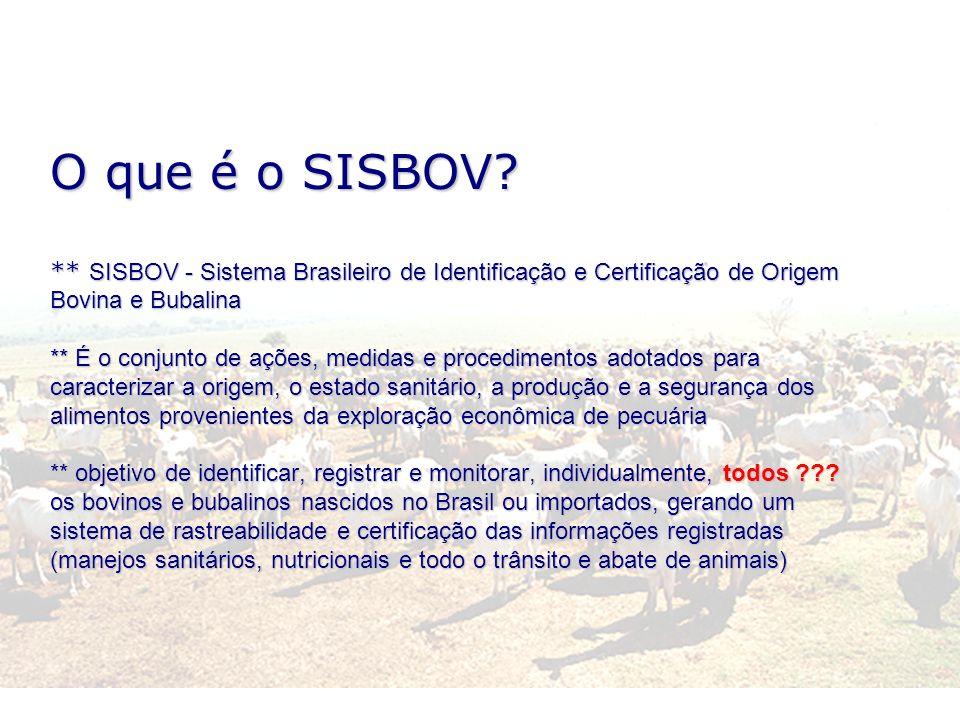 O que é o SISBOV? ** SISBOV - Sistema Brasileiro de Identificação e Certificação de Origem Bovina e Bubalina ** É o conjunto de ações, medidas e proce