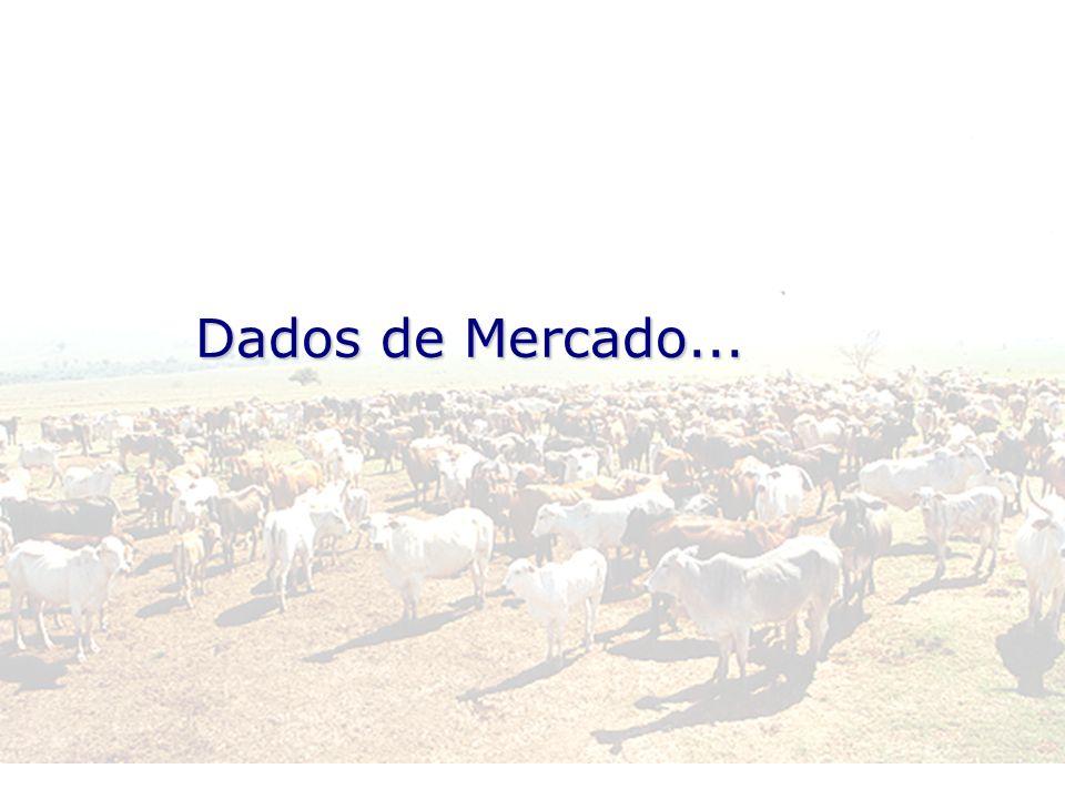 Dados de Mercado...