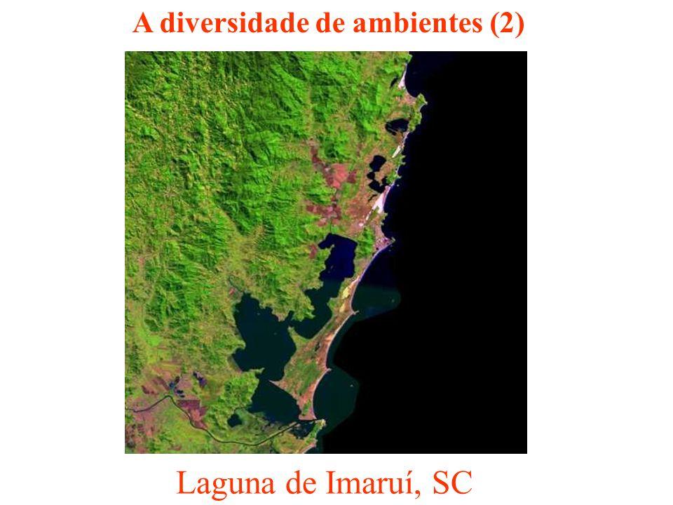 Laguna de Imaruí, SC A diversidade de ambientes (2)