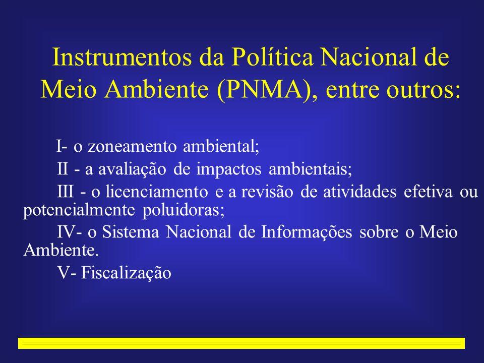 Instrumentos da Política Nacional de Meio Ambiente (PNMA), entre outros: I- o zoneamento ambiental; II - a avaliação de impactos ambientais; III - o licenciamento e a revisão de atividades efetiva ou potencialmente poluidoras; IV- o Sistema Nacional de Informações sobre o Meio Ambiente.