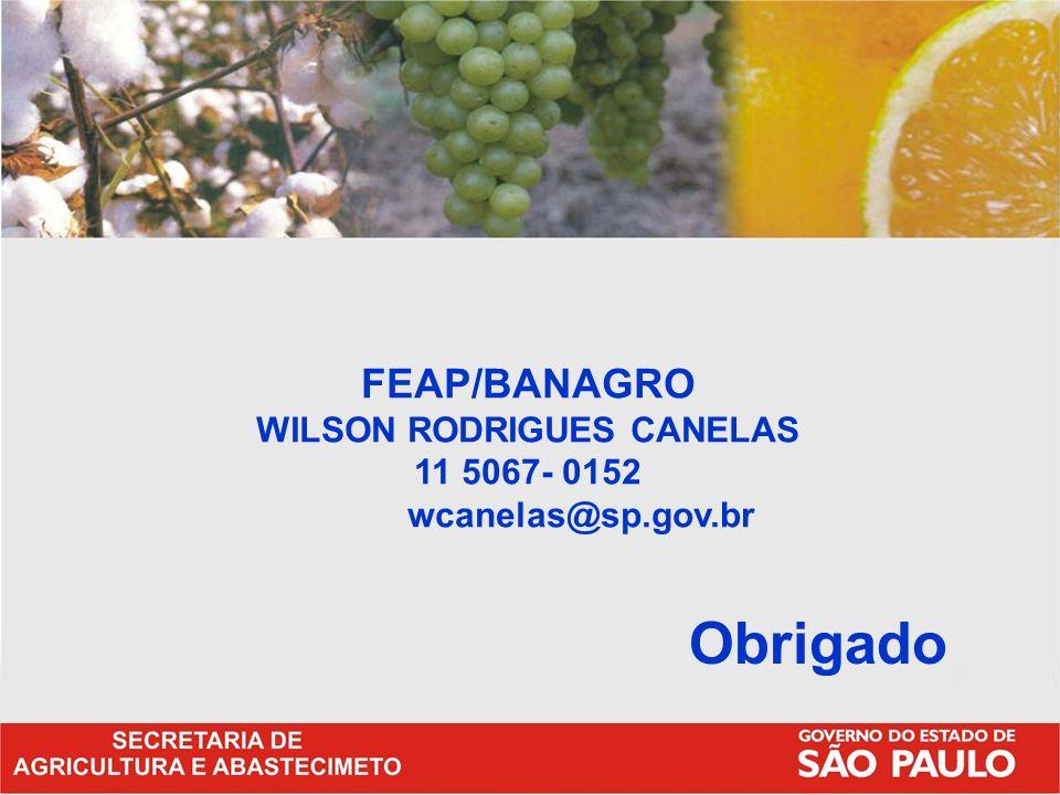FEAP/BANAGRO WILSON RODRIGUES CANELAS 11 5067- 0152 wcanelas@sp.gov.br Obrigado