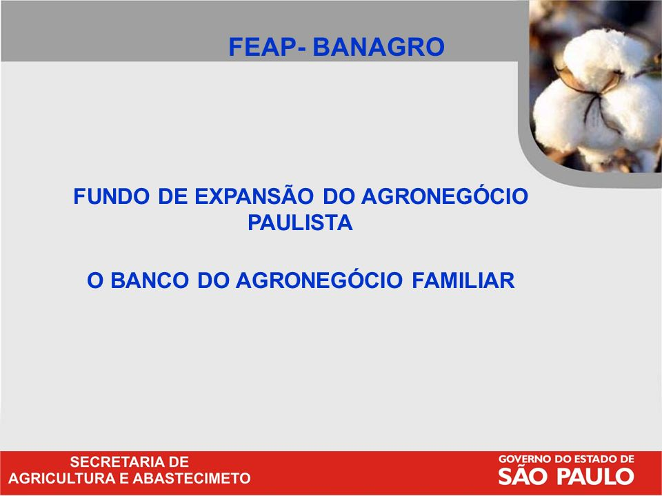 FUNDO DE EXPANSÃO DO AGRONEGÓCIO PAULISTA O BANCO DO AGRONEGÓCIO FAMILIAR FEAP- BANAGRO